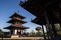 5. Hokki-ji Temple 法起寺 or Temple of the Arising Dharma was once known as Okamoto-dera.  Founded by Prince Shotoku came to understand the Lotus Sutra here in a palace that was later turned into a temple. The small three-storied pagoda is the oldest in Japan.  Though most of the other buildings at Hokkiji were destroyed by fire, this pagoda indicates what the rest of the temple would have originally looked like.  The pagoda is similar to the one at nearby Horyu-ji built by the same prince.