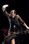 Gran Gala Flamenco in the Circulo de Bellas Artes in Madrid