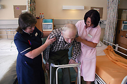 Nurse with disability and health care worker assisting elderly patient to mobilise and transfer into chair using Zimmer frame,