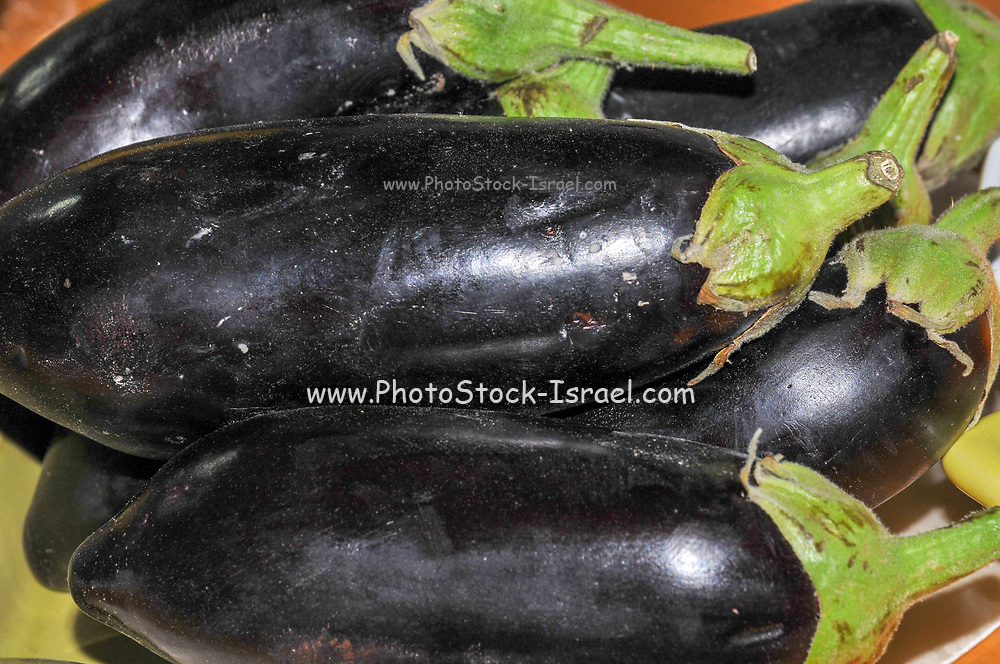 a stack of aubergines in the market