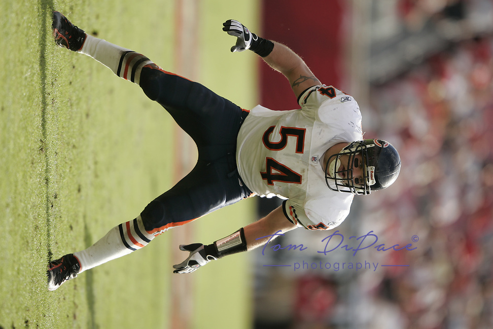 ©2006 Tom DiPace Photography<br /> All Rights Reserved<br /> 561.968.0600<br /> Brian Urlacher<br /> Chicago Bears<br /> Bears@Bucs<br /> 11.27.2005<br /> Credit: Tom DiPace