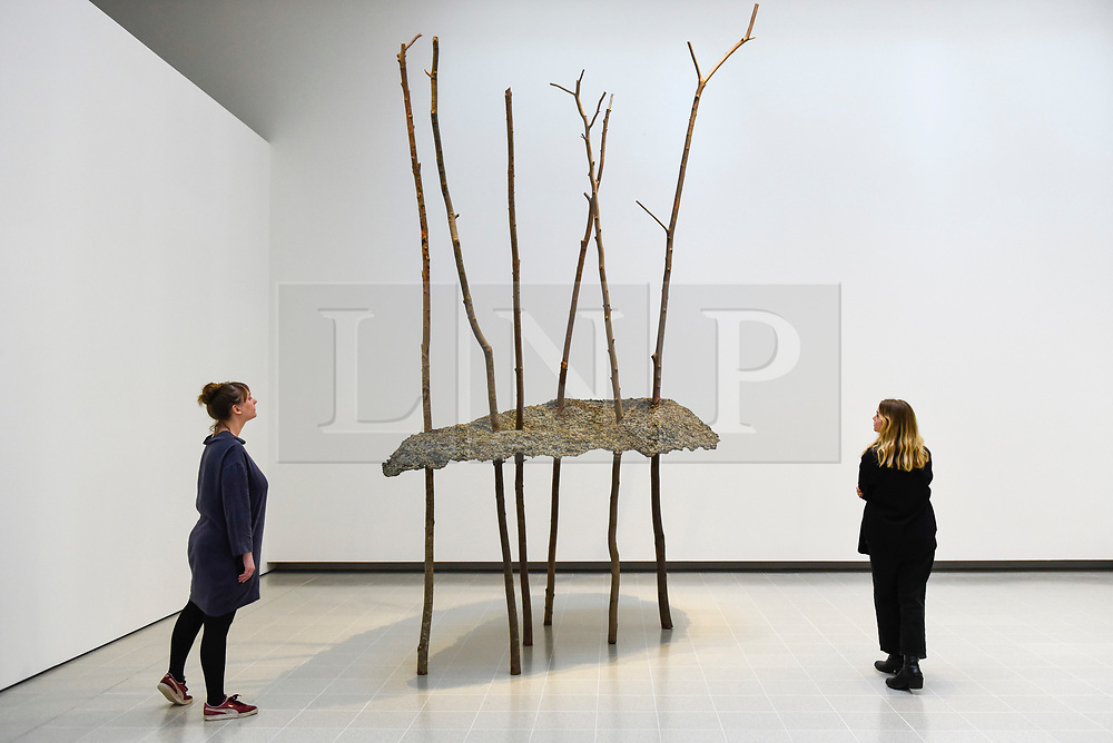 """© Licensed to London News Pictures. 02/03/2020. LONDON, UK. Staff members view """"Soffio di foglie"""", 1982, by Giuseppe Penone. Preview of """"Among The Trees"""" exhibition at the Hayward Gallery on the Southbank.  Artworks by 38 international artists explore man's relationship with trees and forests at a time when the destruction of forests is accelerating in show which runs 4 March to 17 May 2020.  Photo credit: Stephen Chung/LNP"""