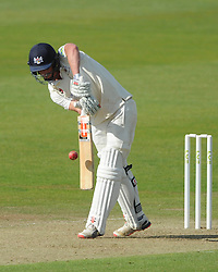 Will Tavare of Gloucestershire bats - Photo mandatory by-line: Dougie Allward/JMP - Mobile: 07966 386802 - 07/06/2015 - SPORT - Football - Bristol - County Ground - Gloucestershire Cricket v Lancashire Cricket - LV= County Championship