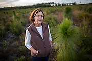 COGDELL, GA - DEC., 8, 2016: Dotty Porter stands in a tract of young long leaf pine trees on the Sessoms Timber Trust property, Thursday, December 8, 2016, in Cogdell, Ga.  (Photo by Stephen B. Morton for Georgia Forestry Magazine)