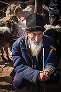A Uyghur man in the animal market of the Shufu County Bazaar near Kashgar, Xinjiang, China.