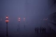 Street Lights in Mist