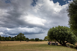 © Licensed to London News Pictures. 24/08/2020. London, UK. Families hide under a large tree in Richmond Park as dark clouds loom over South West London. Forecasters have warned that Storm Francis is set to batter the UK later tonight with winds in excess of 50mph along with heavy rain. The Met Office has issued a yellow weather warning for high winds for most of the country which could lead to travel disruption and damage to trees. Photo credit: Alex Lentati/LNP