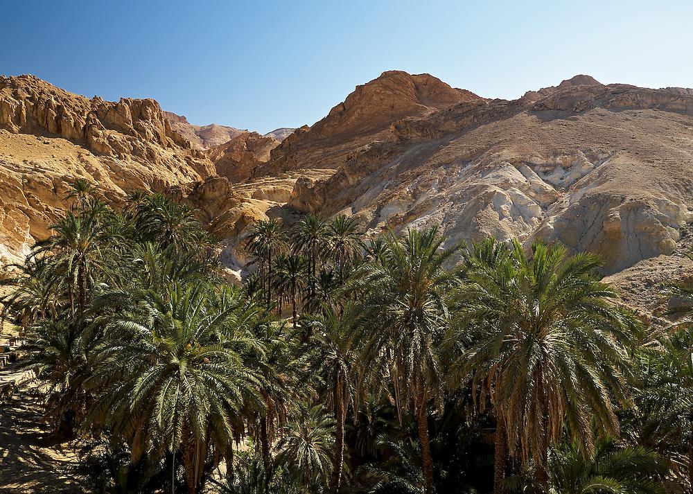 Tunisia - Oasis Chebika