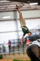 BOE Kristina (GER), Don de la Mar<br /> Tryon - FEI World Equestrian Games™ 2018<br /> Finale Voltigieren Kür/Freestyle Damen 2. Runde Einzelentscheidung<br /> 22. September 2018<br /> © www.sportfotos-lafrentz.de/Stefan Lafrentz