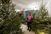 A member of staff stands amongst Christmas trees and waits to welcome customers at the Amazon Black Friday pop-up shop in Shoreditch, east Lonon on November 23, 2018