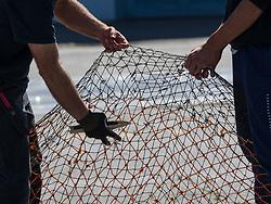 United States, Washington, Seattle, Fishermen's Terminal