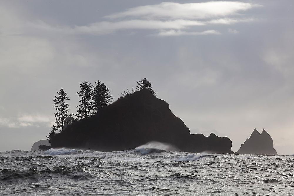 Sea stacks off the coast at First Beach near La Push, Olympic Peninsula, Washington.