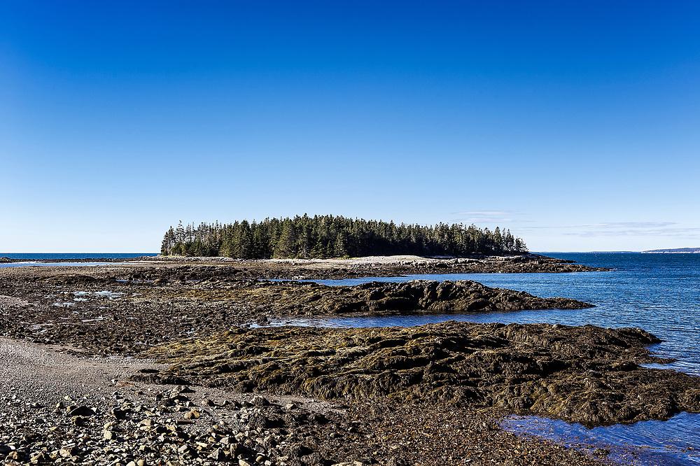 Pond Island, Acadia National Park, Winter Harbor, Schoodic Peninsula, Maine, USA