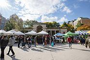More Greenmarket in Union Square