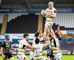 Pierce Phillips of Worcester Warriors claims the lineout<br /> <br /> Photographer Simon King/Replay Images<br /> <br /> European Rugby Challenge Cup Round 5 - Ospreys v Worcester Warriors - Saturday 12th January 2019 - Liberty Stadium - Swansea<br /> <br /> World Copyright © Replay Images . All rights reserved. info@replayimages.co.uk - http://replayimages.co.uk