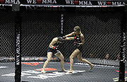 Kampfsport: We love MMA, Hamburg, 10.10.2015<br /> <br /> © Torsten Helmke
