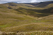 Yanahurco - Thursday, Dec 27 2007: Hacienda Yanahurco is situated in the Cordillera Real de Los Andes on the South-eastern flank of Cotopaxi Volcano.  (Photo by Peter Horrell / http://www.peterhorrell.com)