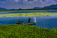 Fishermen fishing in Tissa Lake, Tissamaharama, Southern Province, Sri Lanka.