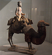 Chinese figurine of a Bactrian Camel with rider. Sui dynasty (581-618 AD), Tang dynasty (618-907 AD) polychrome terracotta.