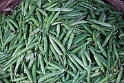 Fresh peas in a pod on sale at market stall in Varanasi, Benares, India