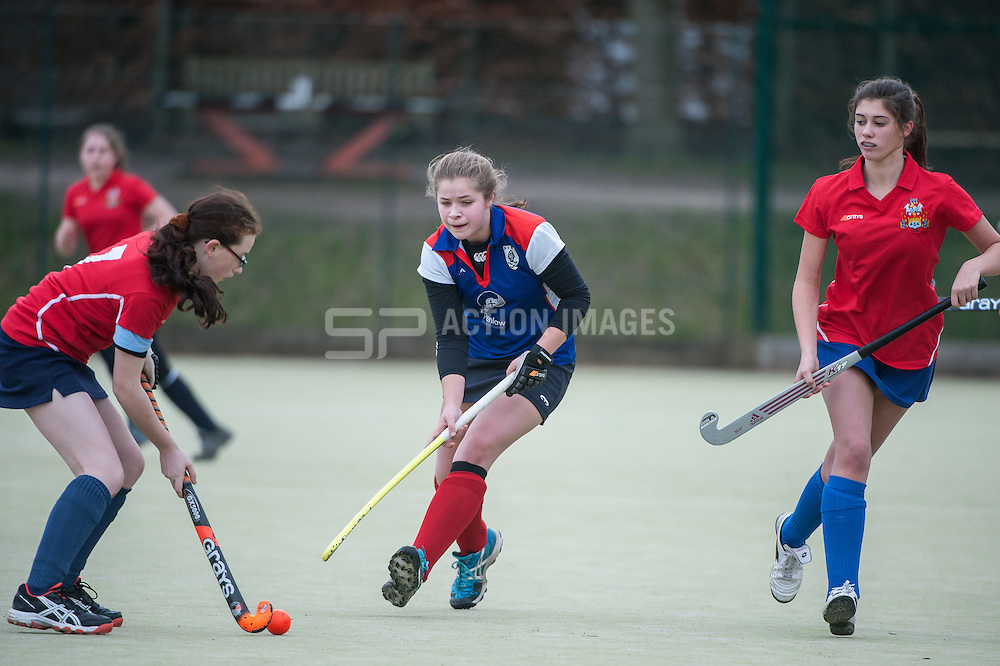 Bishop's Stortford v Cambridge City, Hockerill College, Bishop's Stortford, UK on 02 March 2014. Photo: Simon Parker