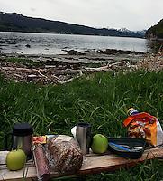 turmat på en planke i fjæra, food on a plank at the beach