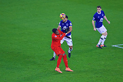 LIVERPOOL, ENGLAND - Monday, December 19, 2016: Liverpool's Divock Origi in action against Everton's Ashley William during the FA Premier League match, the 227th Merseyside Derby, at Goodison Park. (Pic by Gavin Trafford/Propaganda)