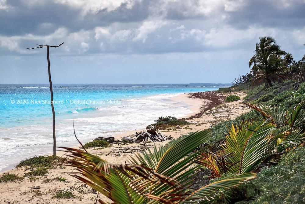 Driftwood on the beach in the Sian Ka'an Biosphere, Mexico.