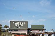 63495-02714 Kites flying at Flagler Beach Flagler Beach, FL