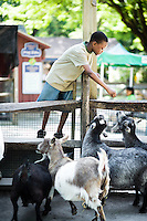 A young boy feeds goats in the children's zoo at the Philadelphia Zoo in Philadelphia on June 25, 2008.