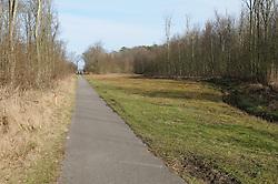 Texel, De Dennen, Westermient, Noord Holland, Netherlands, Staatsbosbeheer