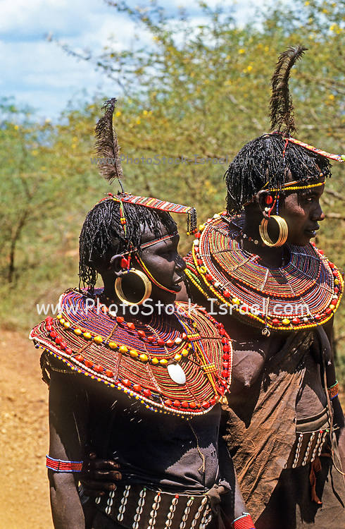 Pokot women in traditional dress The Pokot people (also spelled Pokoot) live in West Pokot County and Baringo County in Kenya and in the Pokot District of the eastern Karamoja region in Uganda. They form a section of the Kalenjin ethnic group and speak the Pokoot language, which is broadly similar to the related Marakwet, Nandi, Tuken and other members of the Kalenjin language group.
