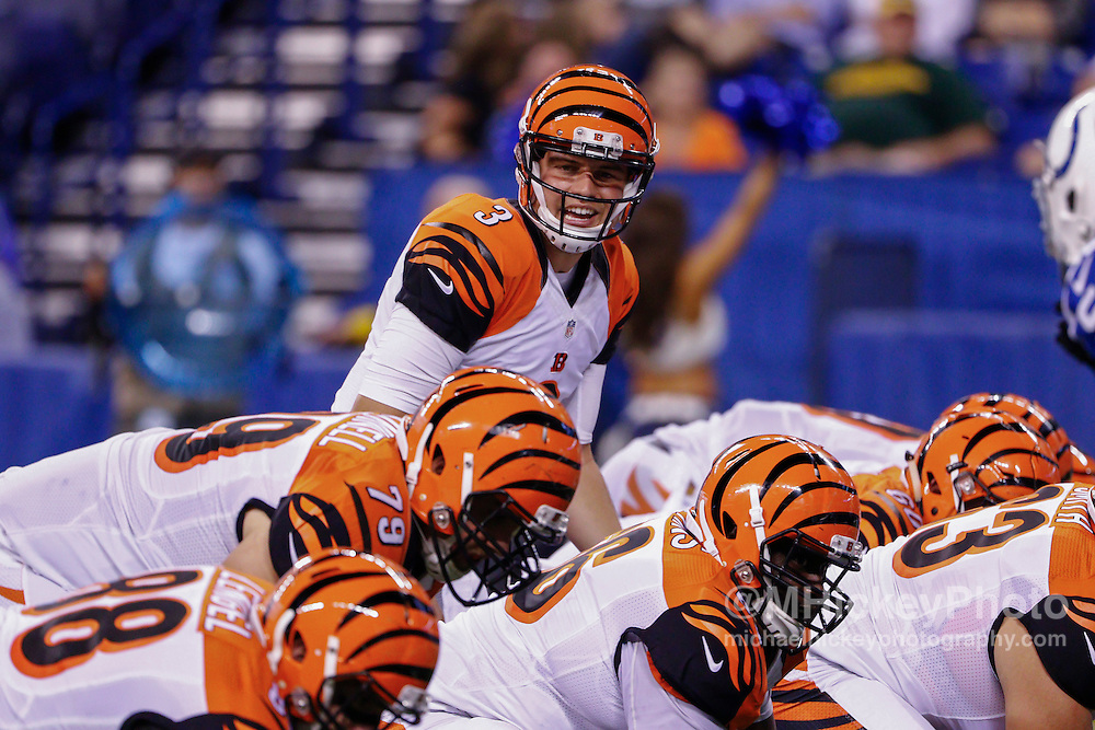 INDIANAPOLIS, IN - SEPTEMBER 3: Keith Wenning #3 of the Cincinnati Bengals calls the count during the game against the Indianapolis Colts at Lucas Oil Stadium on September 3, 2015 in Indianapolis, Indiana. (Photo by Michael Hickey/Getty Images) *** Local Caption *** Keith Wenning