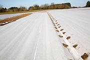 Crop protection fleece covering field crops, Wantisden, Suffolk, England