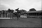 RDS Horse Show. Tommy Wade on Dumdrum clearing a jump in the Aga Khan Trophy Competition..08.08.1963