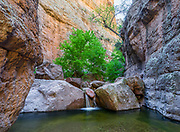A small cascade flows over large boulders in a narrow section of Parsons Canyon, one of numerous side canyons in Aravaipa Canyon Wilderness.