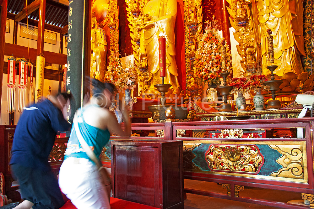 People praying at olden Buddhist statues and interior at Longhua Temple in the south of Shanghai, China. This is a working temple where public come to burn incense, offer gifts and to eat. Located on Longhua Road, the temple was first built in 242 AD, during the period of the Three Kingdoms. Longhua Temple is the oldest temple in Shanghai and also the largest at 20,000 square metres including it's grounds. Because of several destructions by the wars, most of the buildings in Longhua Temple were reconstructed during the reign of the Emperor Tongzhi and Guangxu during the Qing Dynasty.