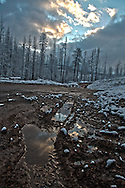 A mud puddle reflects a stormy sky and a late May snow in the Moonlight Fire in the Northern Sierras of California.