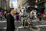 New York, NY - 25 June 2017. New York City Heritage of Pride March filled Fifth Avenue for hours with groups from the LGBT community and it's supporters. A man in a black sport coat and yellow glasses looks curiously out of place on the parade route, near a team of carriage horses.