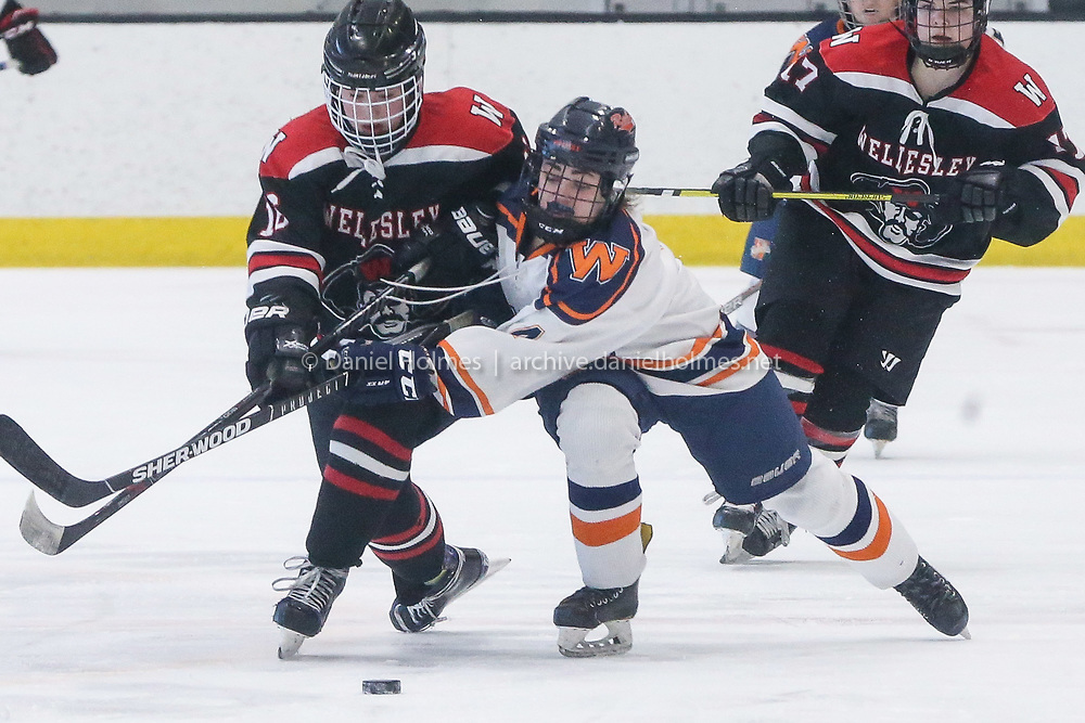 (3/12/19, BOSTON, MA) Walpole's Elizabeth Desimone steals the puck during the Division 2 state semifinals against Wellesley at Warrior Ice Arena in Boston on Tuesday. [Daily News and Wicked Local Photo/Dan Holmes]