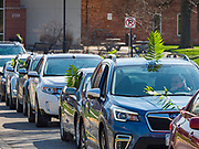 "05 APRIL 2020 - DES MOINES, IOWA:  The vehicular procession after a drive through Palm Sunday service sponsored by Luther Memorial Church on the campus of Grand View University in Des Moines. About 150 people attended the service. They remained in their cars while the ministers read a short passage from the Bible, handed out palms and blessed them. On Sunday, 05 April, Iowa reported 868 confirmed cases of the Novel Coronavirus (SARS-CoV-2) and COVID-19. There have been 22 deaths attributed to COVID-19 in Iowa. Restaurants, bars, movie theaters, places that draw crowds are closed until 30 April. The Governor has not ordered ""shelter in place"" but several Mayors, including the Mayor of Des Moines, have asked residents to stay in their homes for all but essential needs. People are being encouraged to practice ""social distancing"" and many businesses are requiring or encouraging employees to telecommute.        PHOTO BY JACK KURTZ"