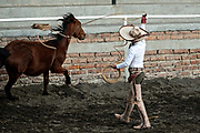 Juan Franco, Sr., ropes a wild mare, during an event called Roping on Foot at a practice session in the Jalisco Highlands town of Capilla de Guadalupe, Mexico. The roping event is called Manganas a Pie or Roping on Foot and involves a charro on foot roping a wild mare by its front legs to cause it to fall and roll once. The wild mare is chased around the ring by three mounted charros.