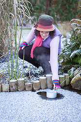 Melting ice on a frozen pond with a saucepan of hot water