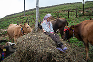Ayla, 12, sitting on a pile of hay in her village of Alaca Yaylası, high up in Turkey's Pontic mountains. Ayla understands the whistling language, although doesn't often use it herself.