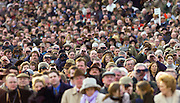 The Cheltenham Festival crowd watching  the big race of the day.