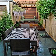 Private Garden Room for reading and relaxation with 2 screened pergola and Blue Stone patio area for dinning