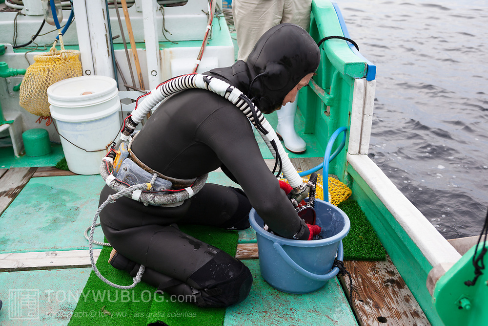 Inaba-san cleaning her face mask in preparation for going to work underwater