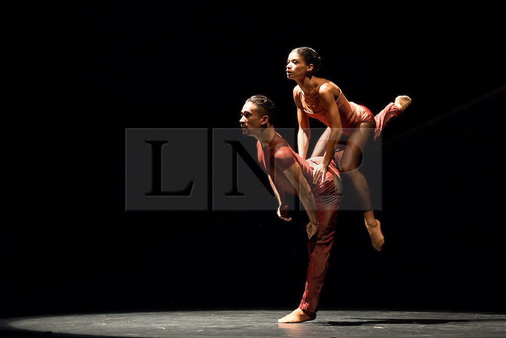 © Licensed to London News Pictures. 27/09/2013. Cedar Lake Contemporary Ballet Company return to Sadler's Wells Theatre, London. The bill consists of Indigo Rose, created by JiÅí Kylián, Ten Duets on a Theme of Rescue, by Canadian choreographer Crystal Pite, andJo Strømgren's Necessity. Photo credit: Tony Nandi/LNP.