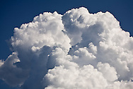 Cumulus cloud billowing like a cotton ball