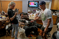Gretchen and Ron Levine of A Paw Above in Hollywood are taking care of 20 dogs and 21 cats as   they've been inundated with pet care requests by people fleeing Hurricane Irma. (Photo by Susan Stocker/Sun Sentinel/TNS/Sipa USA)<br />